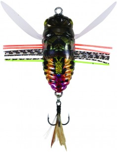 Duo Realis Grade A Shinmushi Sunset Moth